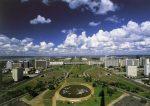 Papel de Parede em Brasília