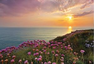 Painel Fotográfico Praia a vista de Rosas 8-901