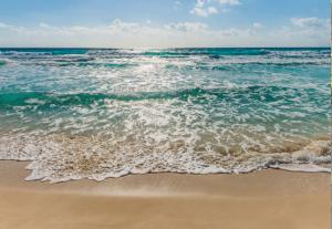 Painel Fotográfico Beira do mar 8-983