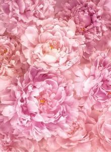 Painel Fotográfico com imagem de Rosas | Ref: XXL2-009