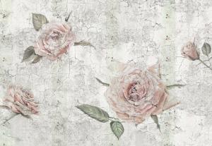 Painel Fotográfico Rosas Suaves em tom Pastel | Ref: XXL4-049 - Medidas: 4.00m x 2.60m