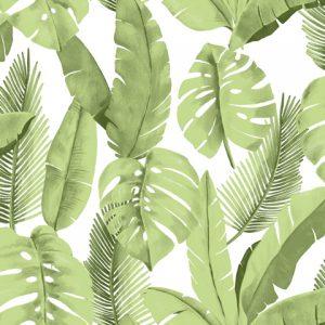 papel de parede com folhagens verde - Ref: 3702