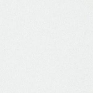 Papel de Parede Branco 3333-1