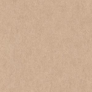 Papel de Parede Liso bege nude 6370-27
