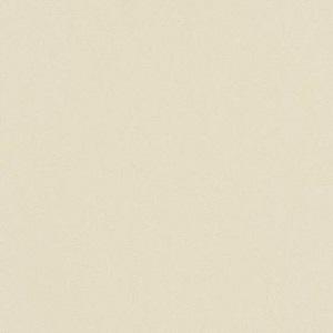 Papel de Parede liso bege escuro 6342-02