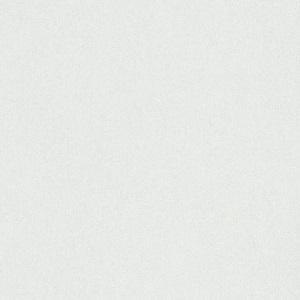 Papel-de-Parede-liso-branco-6370-01