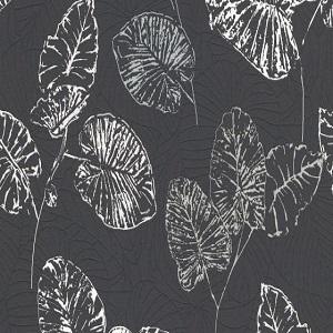 Papel de parede folhas brancas fundo preto 5426-15