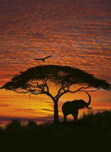 Painel Fotográfico Pôr do Sol Africano/ Ref: 4-501 1.94m Largura x 2.70m Altura